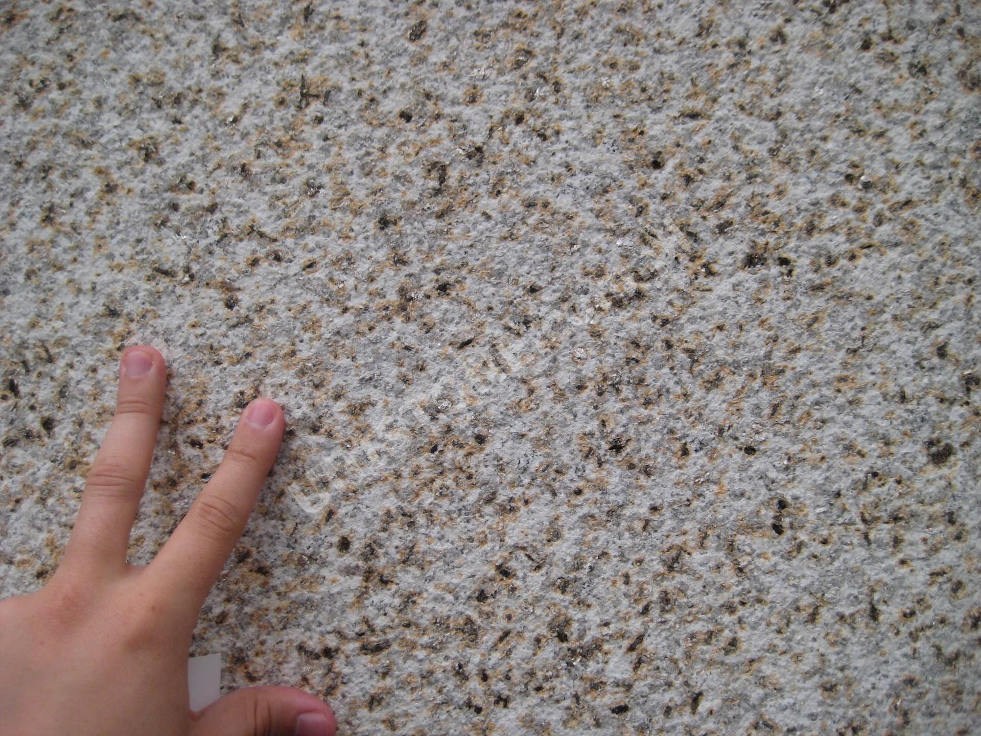 Pedra Vella, groszek, zbliżenie